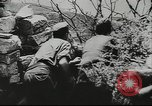 Image of German troops Kuban Russia, 1943, second 10 stock footage video 65675057918