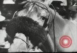 Image of horse and buggy race Vienna Austria, 1943, second 3 stock footage video 65675057926