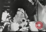 Image of horse and buggy race Vienna Austria, 1943, second 4 stock footage video 65675057926