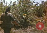Image of 49th Infantry Brigade Binh Phuoc Vietnam, 1970, second 11 stock footage video 65675057982