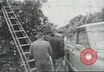 Image of Mexican American orange pickers Farmersville California USA, 1968, second 1 stock footage video 65675058039