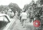 Image of Mexican American orange pickers Farmersville California USA, 1968, second 2 stock footage video 65675058040