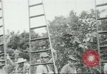 Image of Mexican American orange pickers Farmersville California USA, 1968, second 11 stock footage video 65675058040