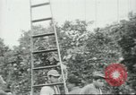 Image of Mexican American orange pickers Farmersville California USA, 1968, second 12 stock footage video 65675058040