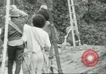 Image of Mexican American orange pickers Farmersville California USA, 1968, second 3 stock footage video 65675058041
