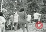 Image of Mexican American orange pickers Farmersville California USA, 1968, second 7 stock footage video 65675058041