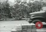 Image of Mexican American orange pickers Farmersville California USA, 1968, second 2 stock footage video 65675058042