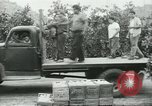 Image of Mexican American orange pickers Farmersville California USA, 1968, second 6 stock footage video 65675058042