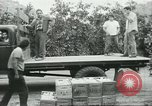 Image of Mexican American orange pickers Farmersville California USA, 1968, second 9 stock footage video 65675058042