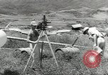 Image of P-39 Airacobras Wau Papua New Guinea, 1943, second 5 stock footage video 65675058122