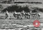 Image of troop train United States USA, 1943, second 11 stock footage video 65675058134
