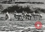 Image of troop train United States USA, 1943, second 12 stock footage video 65675058134