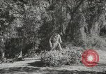 Image of supplies European Theater, 1944, second 1 stock footage video 65675058159
