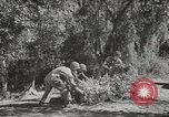 Image of supplies European Theater, 1944, second 3 stock footage video 65675058159