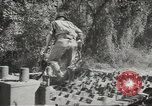 Image of supplies European Theater, 1944, second 12 stock footage video 65675058159
