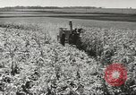 Image of agriculture activities United States USA, 1945, second 8 stock footage video 65675058167