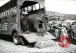 Image of elephant New York United States USA, 1958, second 4 stock footage video 65675058264