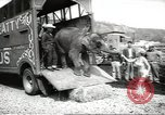 Image of elephant New York United States USA, 1958, second 5 stock footage video 65675058264