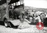 Image of elephant New York United States USA, 1958, second 6 stock footage video 65675058264