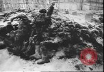 Image of German atrocities against Soviet citizens Soviet Union, 1943, second 4 stock footage video 65675058272