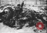 Image of German atrocities against Soviet citizens Soviet Union, 1943, second 5 stock footage video 65675058272