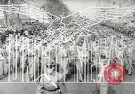 Image of King George VI Africa, 1943, second 9 stock footage video 65675058478