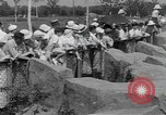 Image of hippopotamus Brookfield Illinois USA, 1935, second 8 stock footage video 65675058526