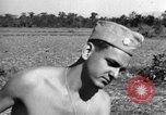 Image of United States 900th Airborne Engineers Tamu Burma, 1944, second 6 stock footage video 65675058619