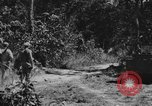 Image of United States 900th Airborne Engineers Tamu Burma, 1944, second 8 stock footage video 65675058623