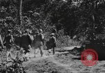 Image of United States 900th Airborne Engineers Tamu Burma, 1944, second 11 stock footage video 65675058623