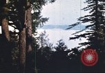 Image of forest fire United States USA, 1984, second 4 stock footage video 65675058683