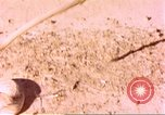Image of snake Sub Saharan Africa, 1958, second 10 stock footage video 65675058728