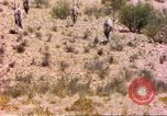 Image of gazelles Sub Saharan Africa, 1958, second 1 stock footage video 65675058736