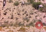 Image of gazelles Sub Saharan Africa, 1958, second 7 stock footage video 65675058736