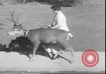 Image of a deer Los Angeles California USA, 1935, second 2 stock footage video 65675058979