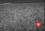 Image of wheat harvesting Washington State United States USA, 1943, second 7 stock footage video 65675059036