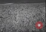 Image of wheat harvesting Washington State United States USA, 1943, second 8 stock footage video 65675059036