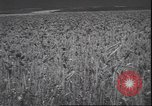 Image of wheat harvesting Washington State United States USA, 1943, second 10 stock footage video 65675059036