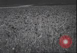 Image of wheat harvesting Washington State United States USA, 1943, second 11 stock footage video 65675059036