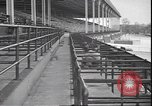 Image of horse racing Rhode Island United States USA, 1945, second 6 stock footage video 65675059050