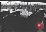 Image of German soldiers on skis in World War 2 Soviet Union, 1943, second 11 stock footage video 65675059096
