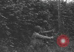 Image of American soldiers Saint Lo France, 1944, second 11 stock footage video 65675059236