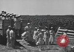 Image of Women Navy personnel United States USA, 1944, second 8 stock footage video 65675059239
