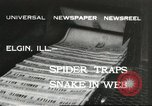 Image of snake Elgin Illinois USA, 1932, second 1 stock footage video 65675059264