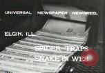 Image of snake Elgin Illinois USA, 1932, second 7 stock footage video 65675059264