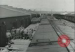 Image of mules United States USA, 1943, second 7 stock footage video 65675059295