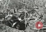 Image of British soldiers Anzio Italy, 1944, second 12 stock footage video 65675059386