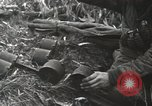 Image of Allied soldiers Anzio Italy, 1944, second 11 stock footage video 65675059418