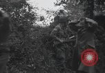 Image of German prisoners Normandy France, 1944, second 12 stock footage video 65675059454