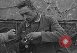 Image of German prisoners Normandy France, 1944, second 8 stock footage video 65675059455